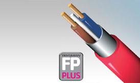 FP Plus